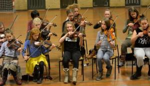 mange violiner