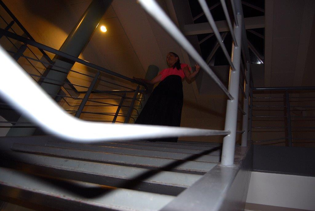 Gisela Joâo overraksede publikum ved Tønder Fetivalen i 2010, da hun efter koncerten trådte ud på en trappe og gav et numme, mens publikum var på vej ud. Fotos: Per Dyrholm