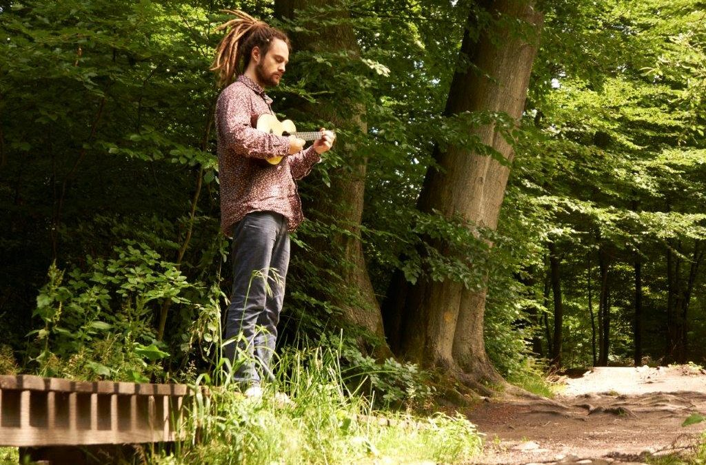 LP: Tobias Elof: 'Ukulele Meditations